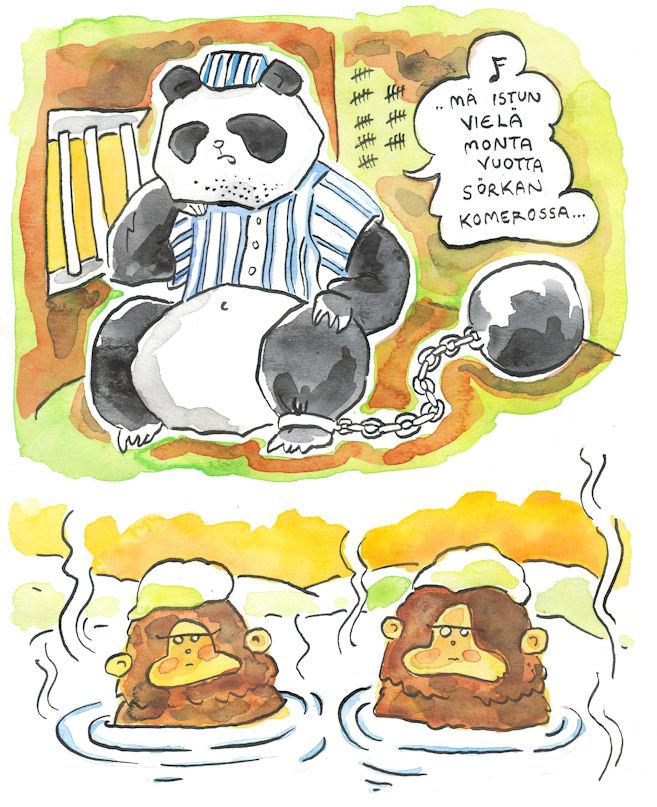 panda lumi pyry